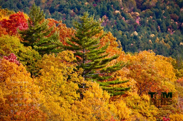 Fall colors from Blue Valley Overlook in Nantahala National Forest near Highlands, North Carolina