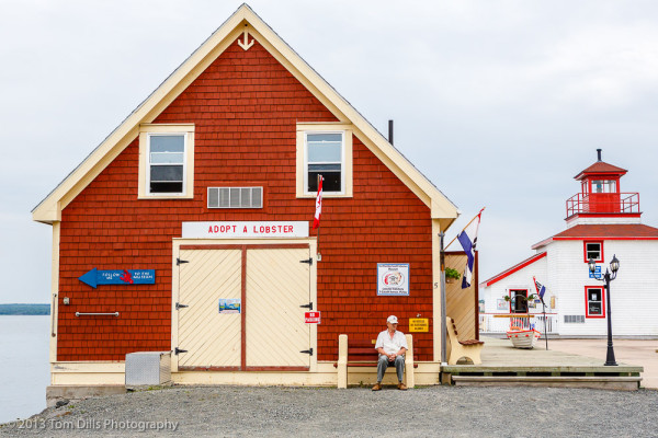 """Adopt a Lobster"" Pictou, Nova Scotia"