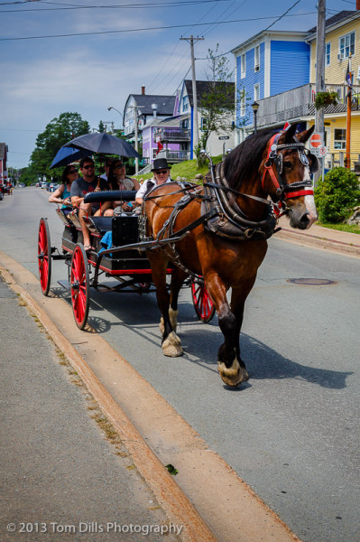 Horse-drawn carriage tours were a popular form of sightseeing in Lunenburg, Nova Scotia