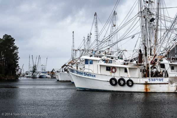Fishing boats in Swan Quarter, North Carolina