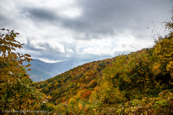 Fall Color along the Blue Ridge Parkway near Waynesville, North Carolina