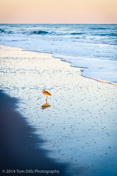 Evening on the beach, Carolina Beach, North Carolina