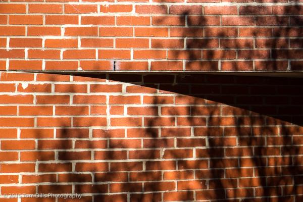 Random brick wall, Charlotte NC
