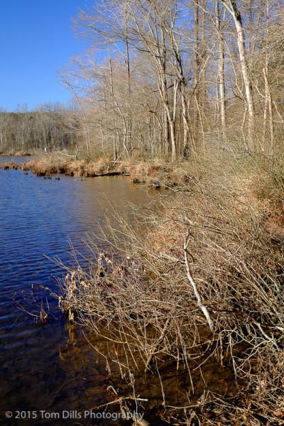 Latta Plantation Nature Preserve, Charlotte NC