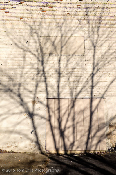 Shadow on a brick wall, Marion, NC