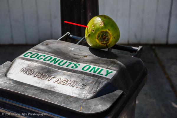 Coconut disposal, Key West, Florida