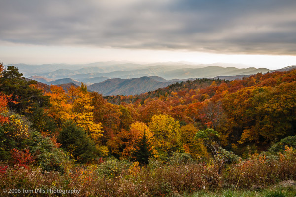 Fall Colors, Green Knob Overlook, Blue Ridge Parkway, NC