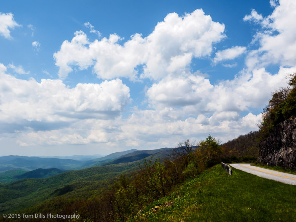 Spring along the Blue Ridge Parkway near Pounding Mill Overlook