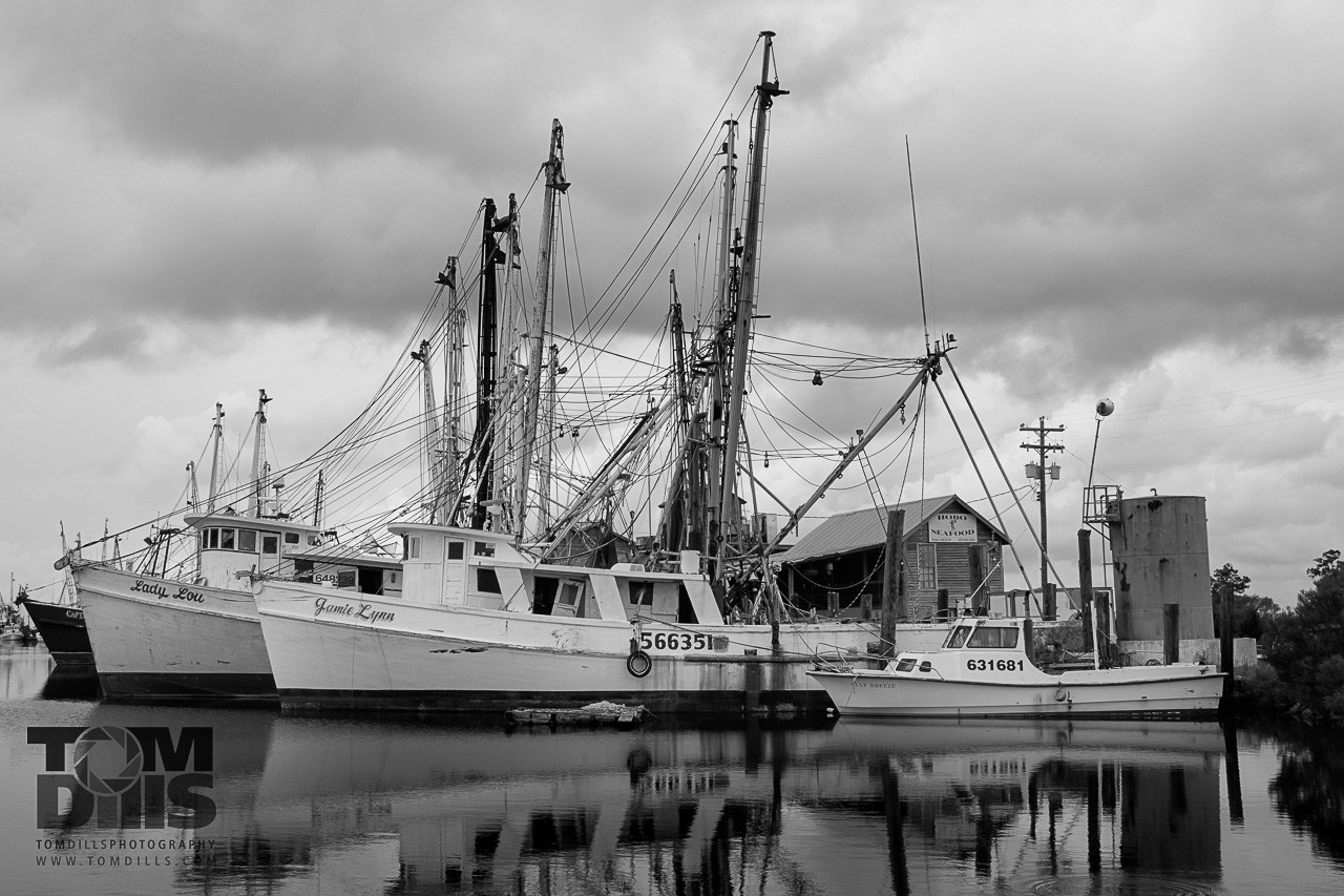Fishing boats at Hobo Seafood, Swan Quarter, North Carolina