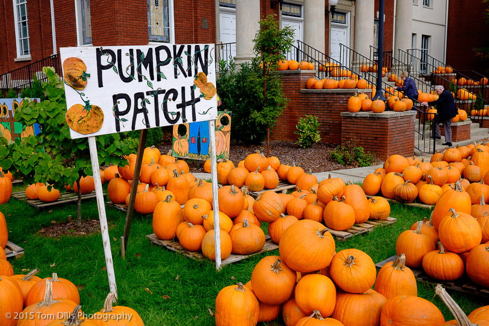Pumpkin Patch at the First United Methodist Church in Waynesville, North Carolina