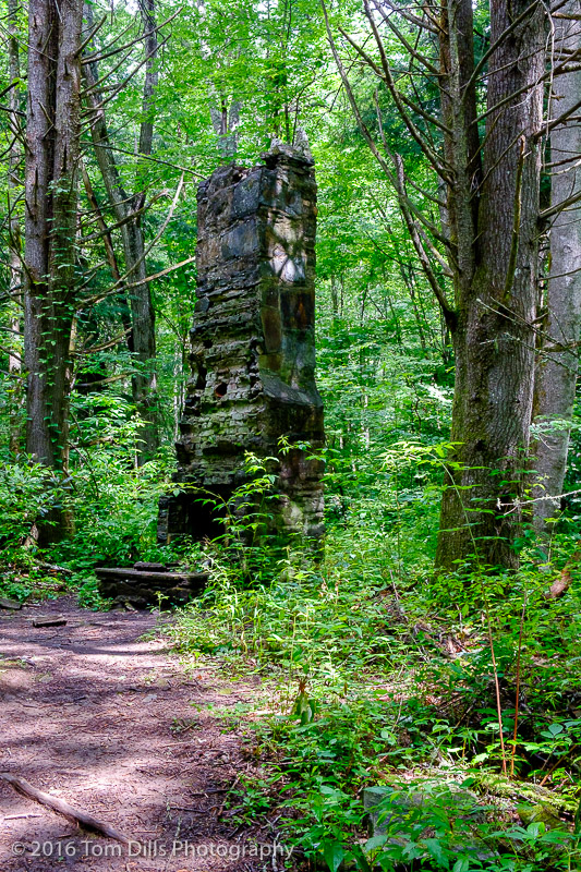 Remains of a former CCC camp along the Kephart Prong Trail in Great Smoky Mountains National Park, North Carolina